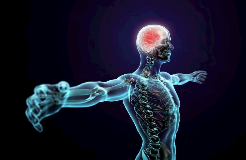 Hjernen styrer ubevidst, om du får ondt i ryggen