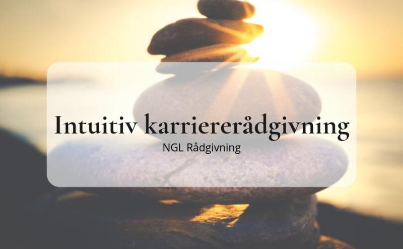 Intuitiv karriererådgivning, NGL rådgivning